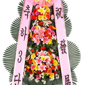 축하3단(기본/일반형)