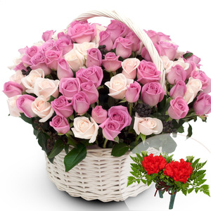 분홍장미혼합바구니4(코사지2개무료)