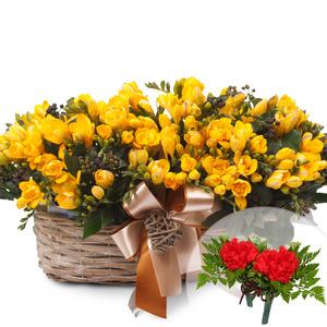 (봄)프리지아노랑색바구니(코사지2개무료)