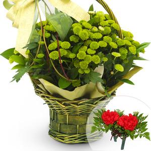 초록색소국바구니(코사지별도)-계절상품